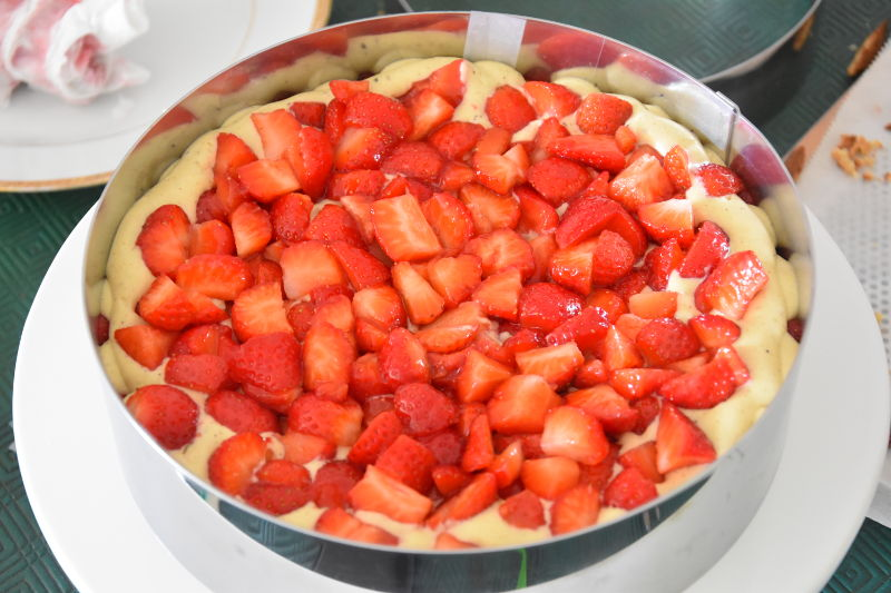 alt fraisierpistache19
