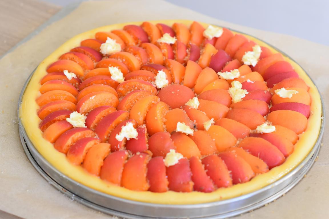 tarte brioche abricots 9