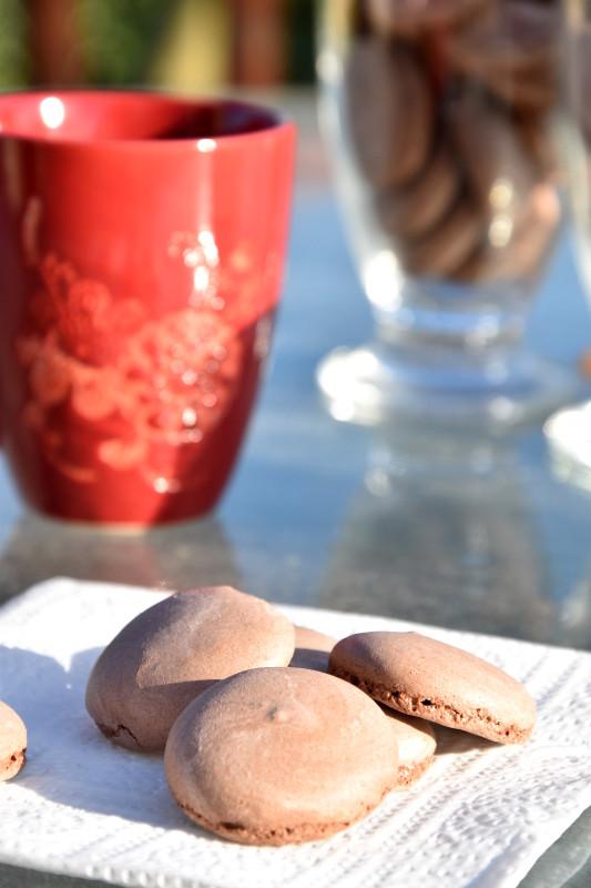 alt meringueschocolat2